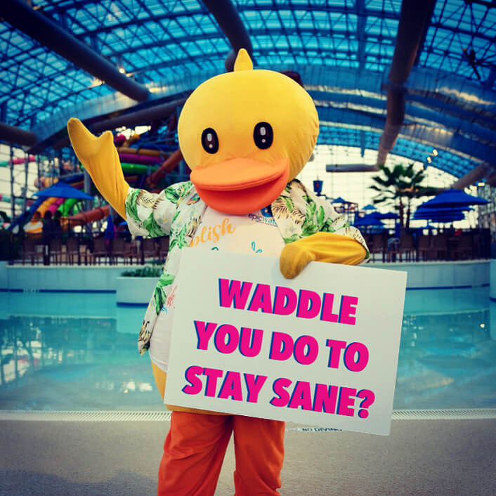 Waddle You Do To Stay Sane Ducky